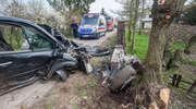 Wypadek w Jegłowniku. Uciekał z miejsca stłuczki, rozbił się na drzewie [zdjęcia]