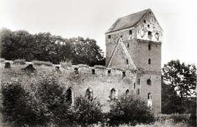Ruiny zamku krzyżackiego w Bałdze.