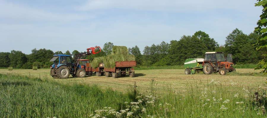 Dzięki zwiększeniu limitu dostępnych środków, szacuje się, że wsparcie otrzyma ponad  12 tys. rolników, wcześniejszy limit pozwalał na pomoc około 6 tys.