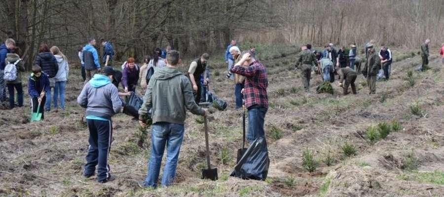 Sadzenie lasu z leśnikami