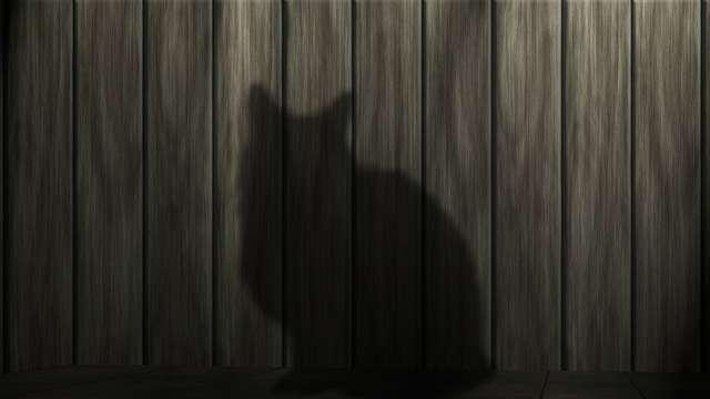 Kto się boi piątku trzynastego, czyli o paraskewidekatriafobii - full image