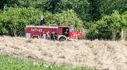 Pożar na polu z miskantusem. Ogień sięgał dwóch metrów