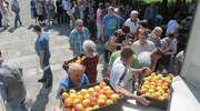 Rozdali 20 ton jabłek z polskich sadów