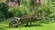 Stwórz swój wymarzony ogród