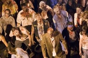 Zombie są wśród nas. Historie o zombie mają dziś kontekst społeczny i ekonomiczny