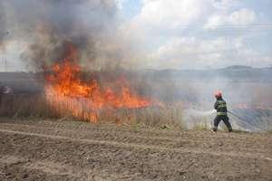 Podsumowanie tygodnia strażackiego: 17 interwencji w powiecie