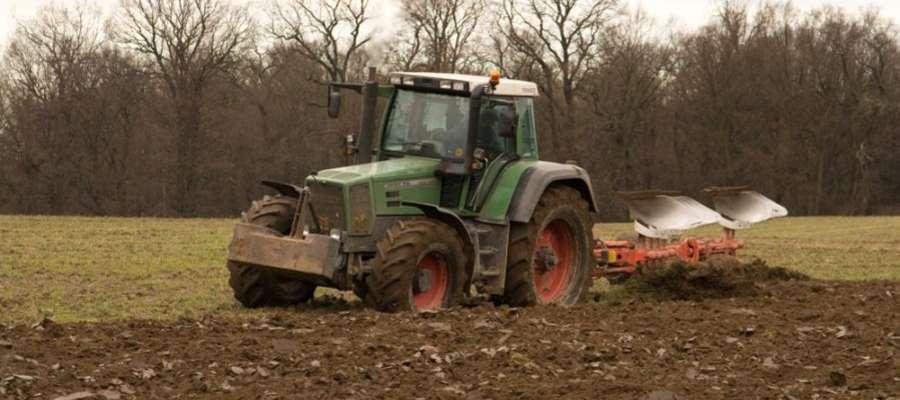 Rolnicy, którzy ponieśli straty, mogą korzystać z wielu form wsparcia