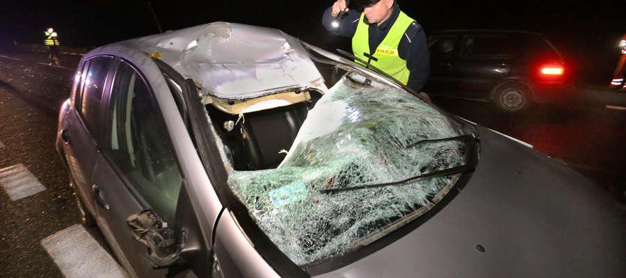 Zderzenie z łosiem pod Olsztynem. Zwierzę wgniotło dach samochodu i wylądowało martwe w rowie