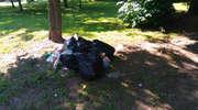 Wyrzuciła śmieci na zielonym skwerze przy Placu Pułaskiego, bo ...  nie chciało jej się iść do śmietnika
