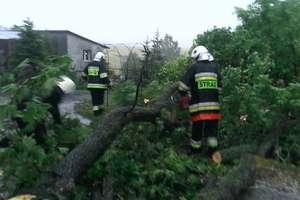 Burza i silne opady deszczu. W Łankiejmach drzewo uderzyło w szynobus
