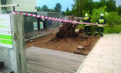 Drzewo spadło na szynobus, wiatr zmiótł stodołę z powierzchni ziemi, woda zalała ulice w Olsztynie. Nawałnica na Warmii i Mazurach