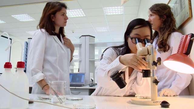 Białowieskie grzyby pomogą leczyć raka? - full image