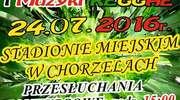 III Ogólnopolski Festiwal Piosenki Polskiej i Muzyki Reggae