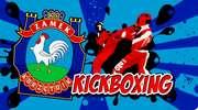 Kolejna edycja wakacyjnych zajęć z kickboxingiem