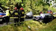 Wypadek na wojewódzkiej 541 pod Zieluniem