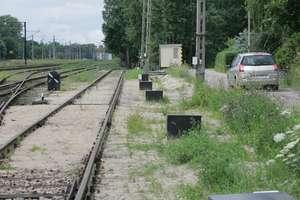 Utrudnienia w ruchu pociągów. Drzewo spadło na tory