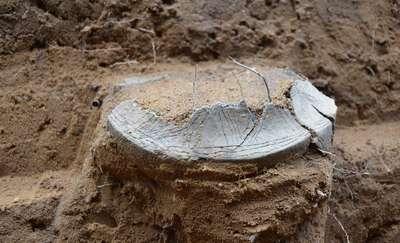 Urna z prochami zmarłego wykopana z kurhanu pod Bukwałdem [ZDJĘCIA]