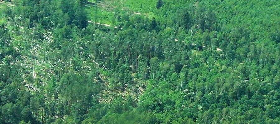 Tak wyglądają niektóre obszary lasów Nadleśnictwa Bartoszyce po ostatnich wichurach.