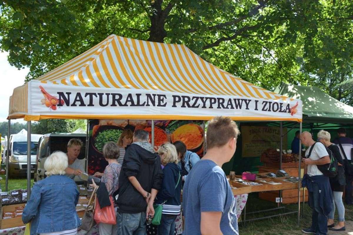 Olsztynek: o ziołach we wianku, kłobuku i smoku wawelskim  - full image