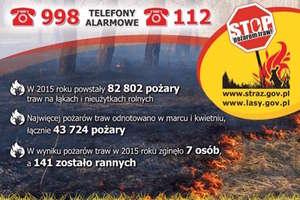 Strażacki tydzień: 17 interwencji w powiecie