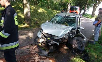Ford uderzył w drzewo. Czworo dzieci trafiło do szpitala