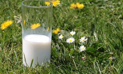 Szklanka mleka po siłowni