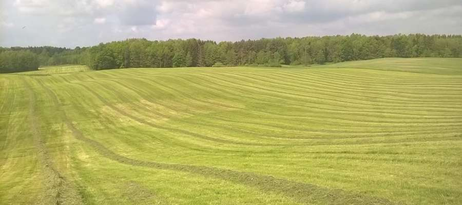 Gospodarstwo państwa Ewy i Wojciecha Jończyk znajduje się w miejscowości Garzewko w północno-wschodniej części Polski, około 20 km od Olsztyna. Swoją przygodę z rolnictwem rozpoczęli w październiku 1984 roku