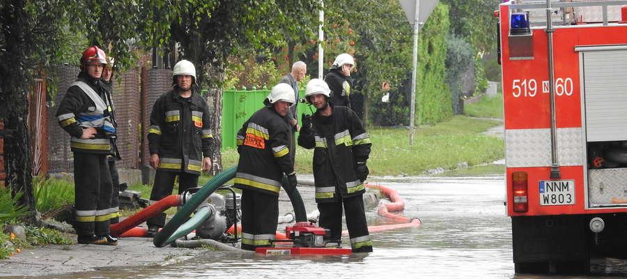 Akcja strażaków na nowomiejskich działkach