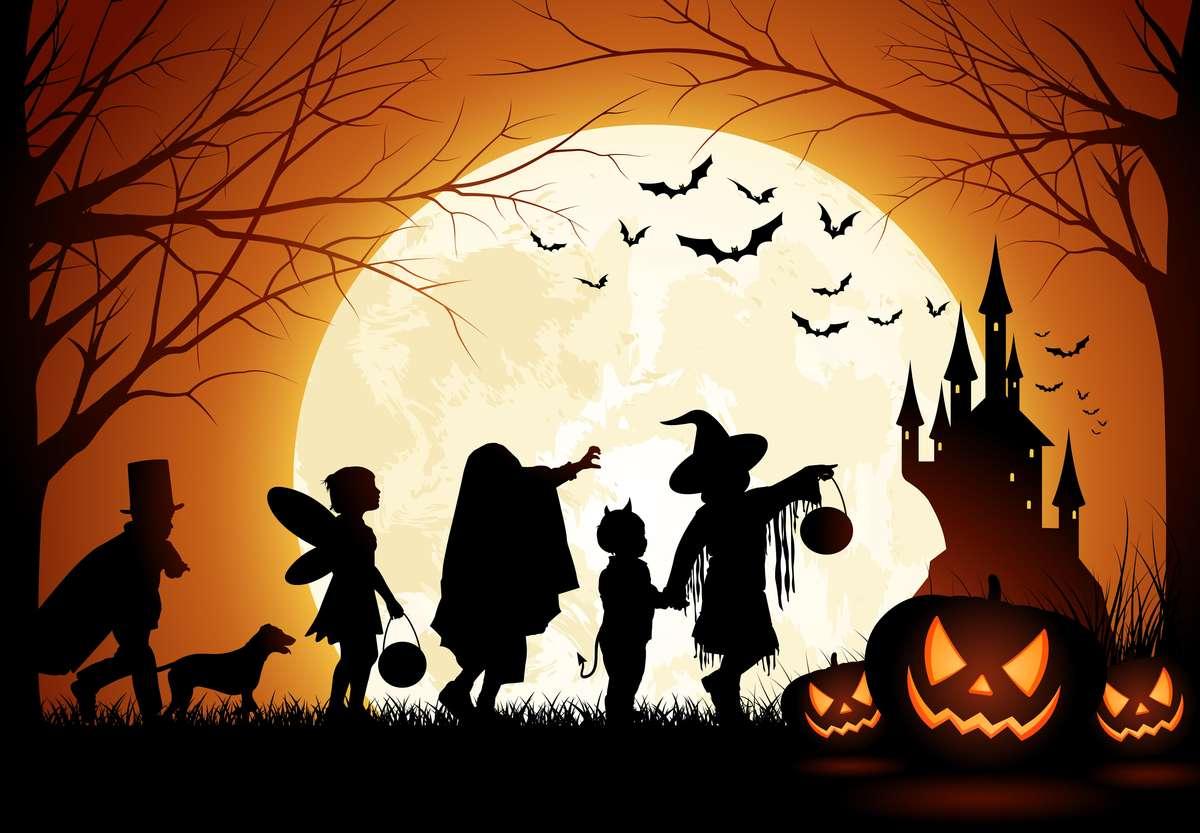 Halloween z dreszczykiem w Hotelu Anders - full image