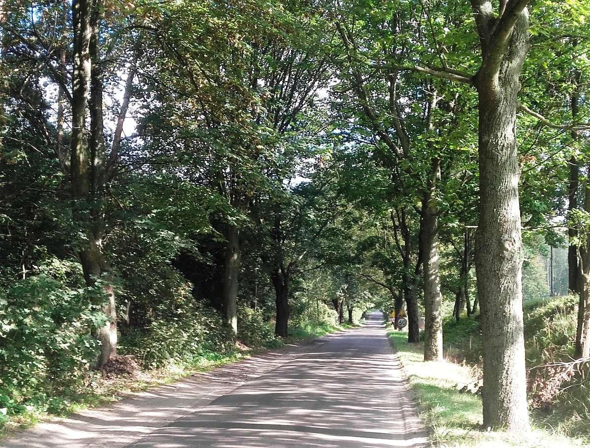 Droga Barczewko - Łęgajny