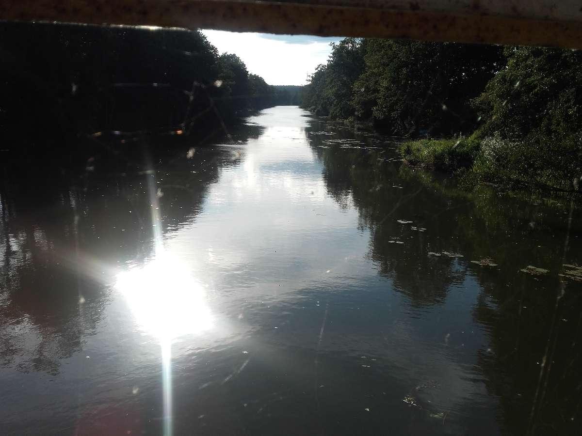 Wadąg widziany z mostu w Zalbkach