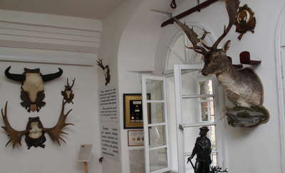 Warto zobaczyć: Sala Łowiecka  w Twierdzy Boyen