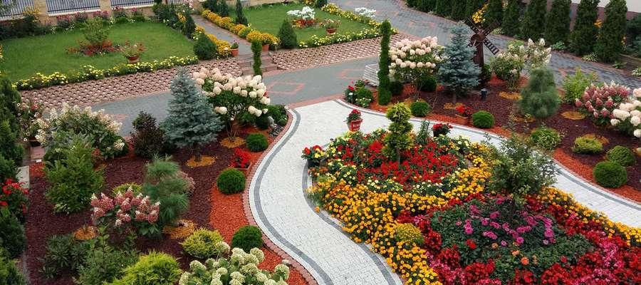 Zwycięski ogród pani Teresy Lewandowskiej z Nowej Sławogóry