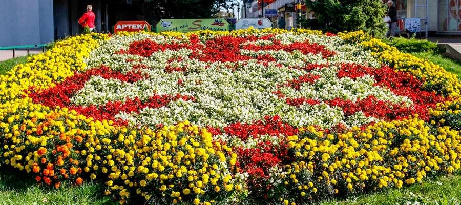 Iwona Morawska jest autorką projektów kompozycji kwiatowych