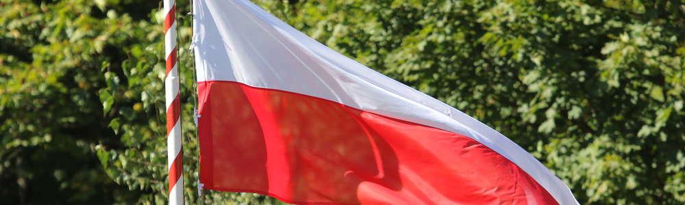 Polscy kibice masowo łamią prawo?