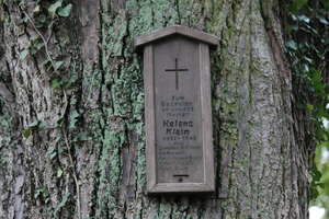 Na zapomnianej, ewangelickiej nekropolii grobów rodzin już nie znajdą