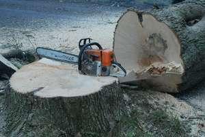 Drzewo przygniotło pilarza. Mężczyzna zginął na miejscu
