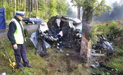 Uderzenie w drzewo główną przyczyną śmiertelnych wypadków w naszym województwie [SONDA]