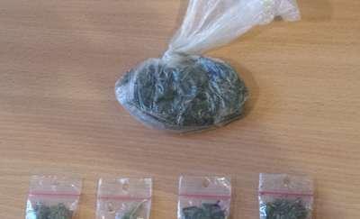Mieszkaniec gminy Działdowo zatrzymany z marihuaną