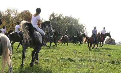 Jeźdźcy i amazonki spotkają się w Janiszach