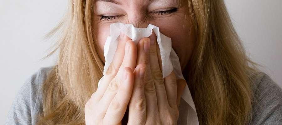 Czy warto iść z przeziębieniem do pracy?