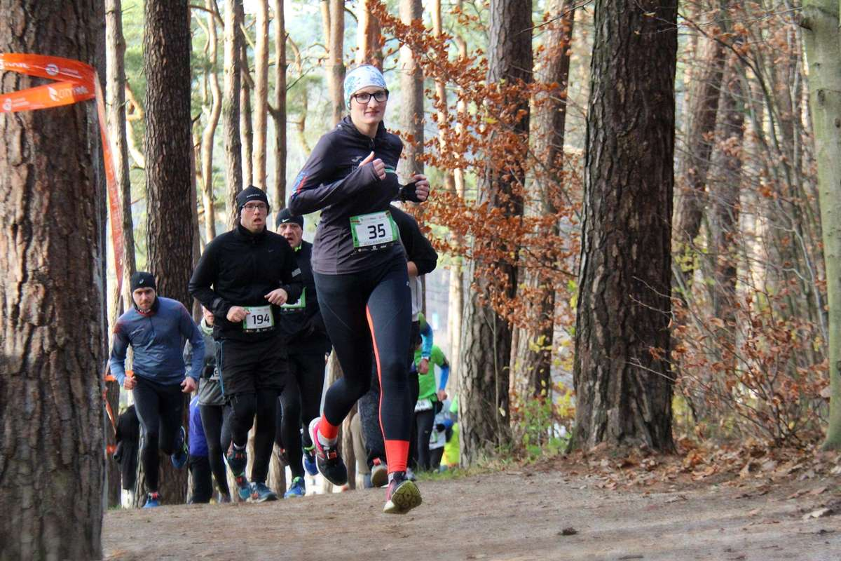 CITY TRAIL z Nationale-Nederlanden Olsztyn - bieg 6 - full image