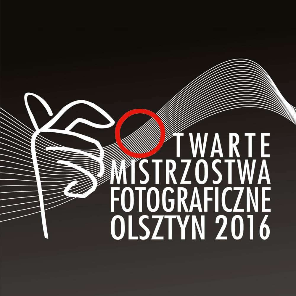 Gala finałowa i wernisaż OMF 2016 - full image