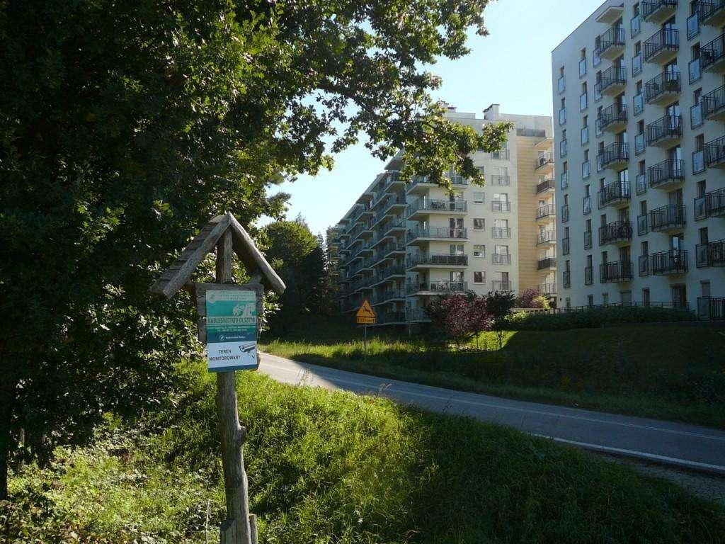 Las przy tym olsztyńskim osiedlu musi ustąpić nowej drodze - full image