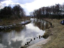 Rzeka Bauda niedaleko przed ujściem do Zalewu Wiślanego