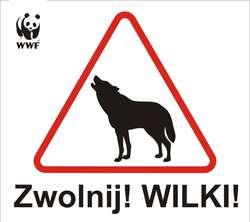 Kierowco zwolnij! Wilki! Nowy znak ostrzegawczy