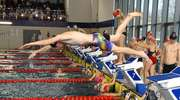 Rekordowe zawody iławskich pływaków. Orka zdobyła 27 medali na mistrzostwach województwa [ZDJĘCIA]