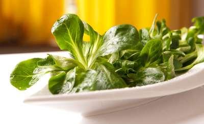 Roszponka - mała sałata, wiele właściwości odżywczych