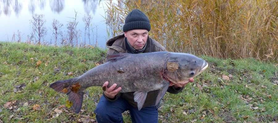 Pan Mirek i jego rekordowa tołpyga nad miejskim zalewiskiem w Lubawie