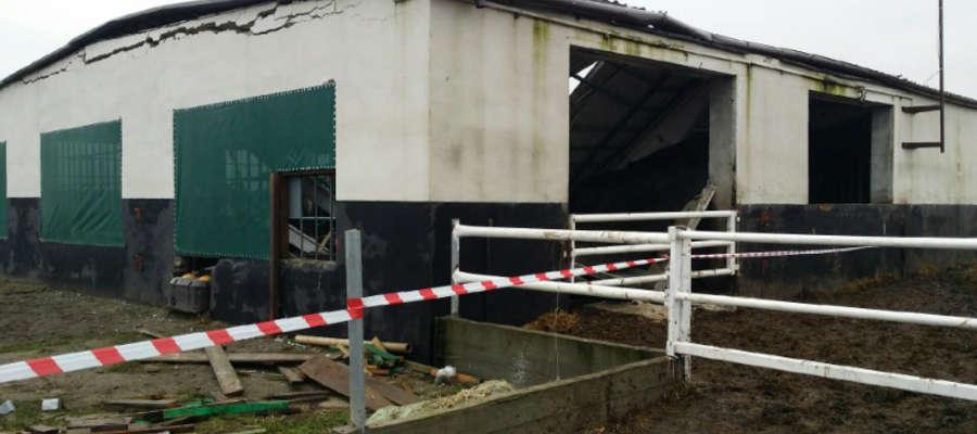 Do jednego z wypadków doszło w tym gospodarstwie w gminie Kisielice